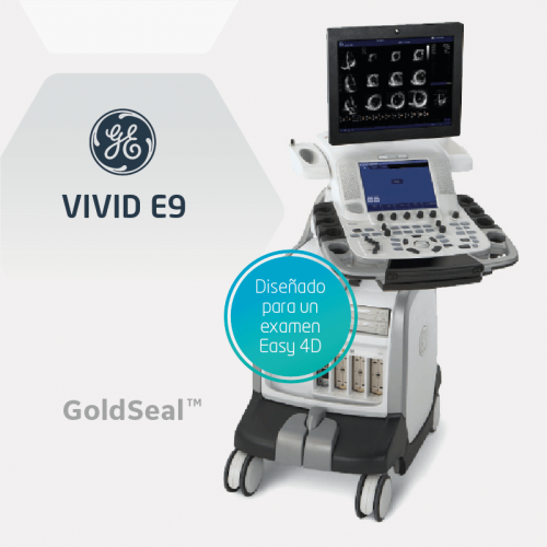 goldseal-vivid-e9-04